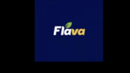 Flava -Grocery Credit